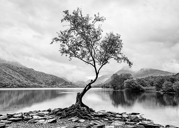Llyn Padarn (2) - Wales