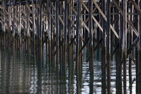 Wooden Pier Legs, Haines. IMG_8090 - Cityscapes