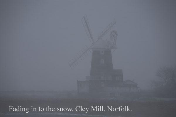 IMG_7457-01 - Norfolk