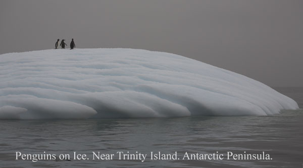 ant000430 - Antarctica 4