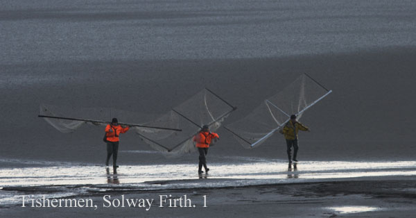 IMG_0296-01 - Solway