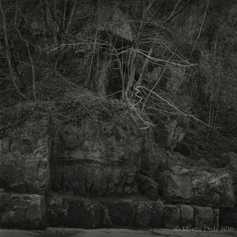 Trees in gorge by Porth Yr Ogof, Brecon Beacons, Wales | The Silver Monochrome: black-and-white film photography by Martin Dyde