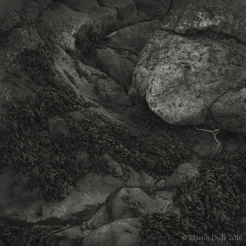 Foreshore with boulder and twig, Oxwich Bay, Gower, Wales | The Silver Monochrome: black-and-white film photography by Martin Dyde