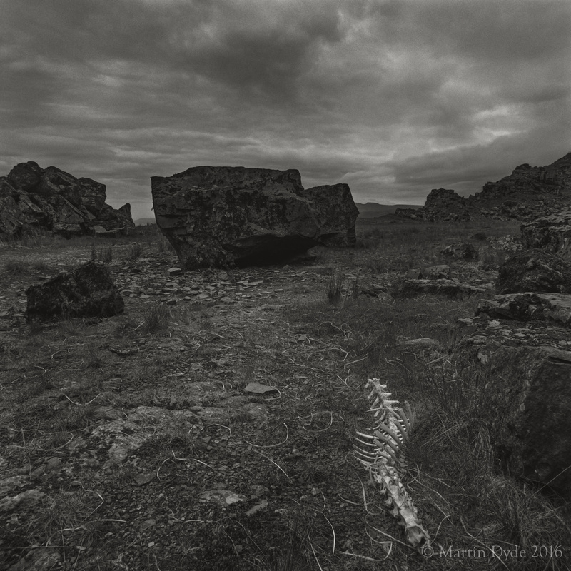 Remains of fallen sheep in disused quarry with Corn Du, Brecon Beacons | The Silver Monochrome: black-and-white film photography by Martin Dyde