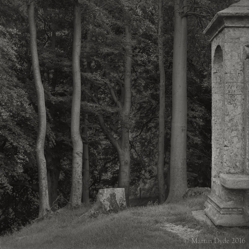 Hill fort with beeches and folly, Beckbury Camp, Cotswolds, England | The Silver Monochrome: black-and-white film photography by Martin Dyde