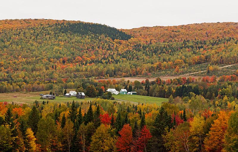 Autumn Foliage Carleton County New Brunswick - New Brunswick Autumn Foliage