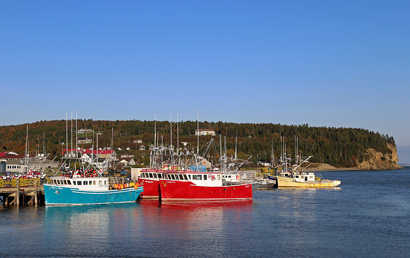 Lobster Boats at Alma Wharf - Boats