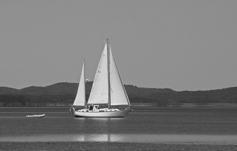 Sailing the Bay of Fundy - Boats