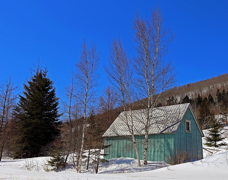 Country Cabin - Winterscape