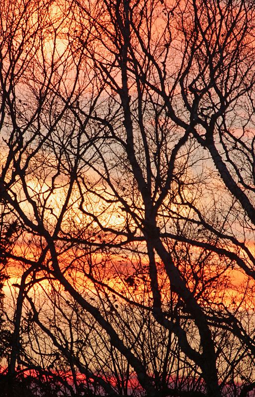November Twilight - Sunset/Moonrise