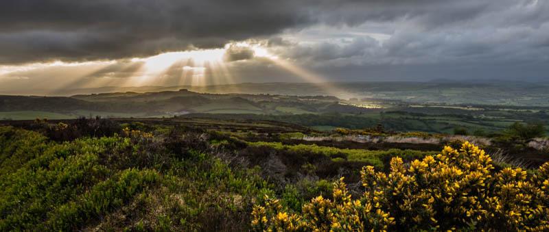 stiperstones june sunset - Wilderland, Wildlife & Wonder from the Shropshire Borders