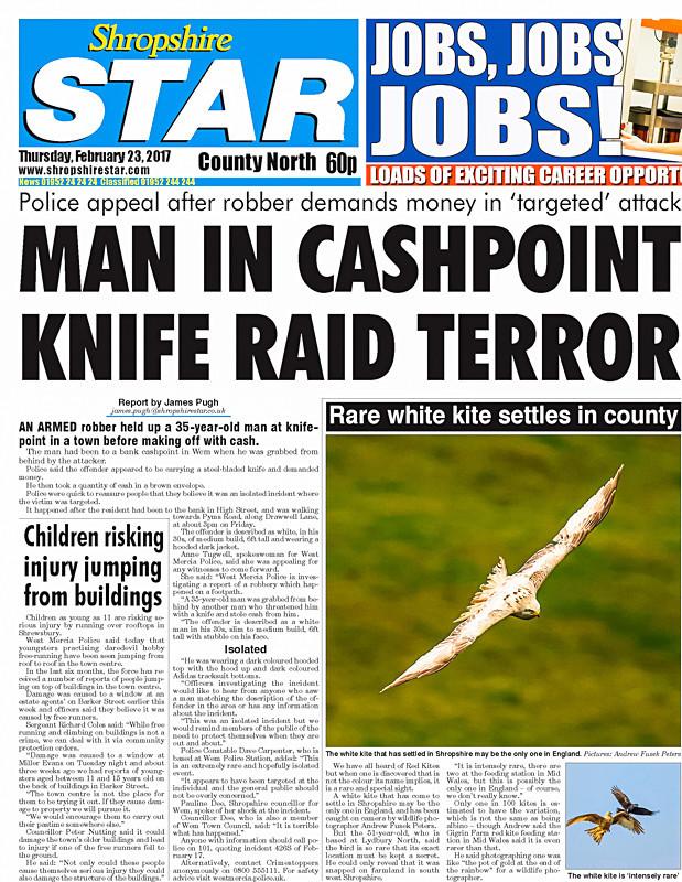 leucistic kite Shropshire Star - Media & Awards