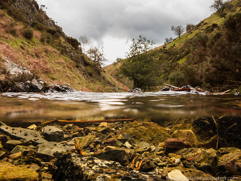 Upland stream, Long Mynd - Upland, Shropshire's Long Mynd & Stiperstones