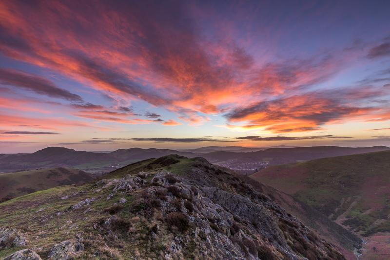 - Wilderland, Wildlife & Wonder from the Shropshire Borders