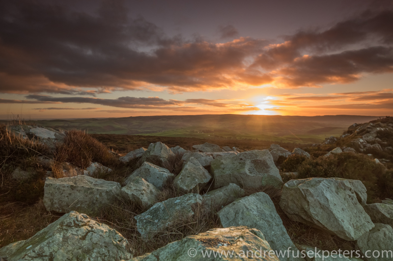 December dawn Stiperstones - Wilderland, Wildlife & Wonder from the Shropshire Borders