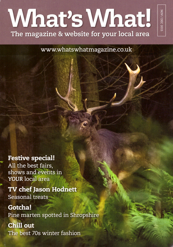 Long Haired Fallow Buck, What's What cover shot - Media & Awards