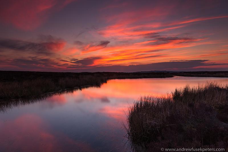 Bog Pool at sunset, Long Mynd - Upland, Shropshire's Long Mynd & Stiperstones
