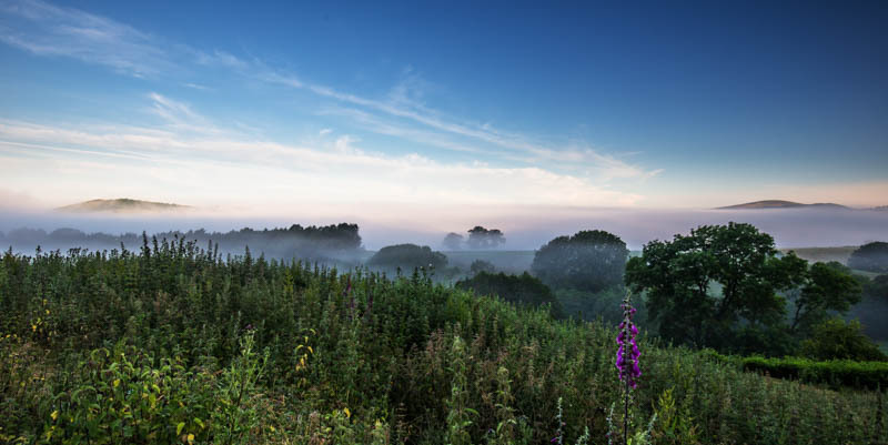 Long Mynd view at dawn - Wilderland, Wildlife & Wonder from the Shropshire Borders