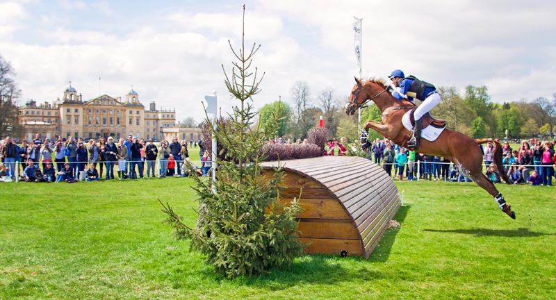 Jock Paget | Badminton Horse Trials | Rachael Edwards Photography