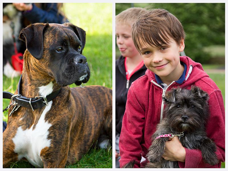 Dog & Portrait Photography | Natural Portraits | Rachael Edwards