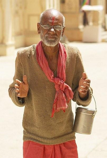 Wise Man, Monkey Temple - India (Assam, Brahmaputra cruise, Agra and Jaipur)