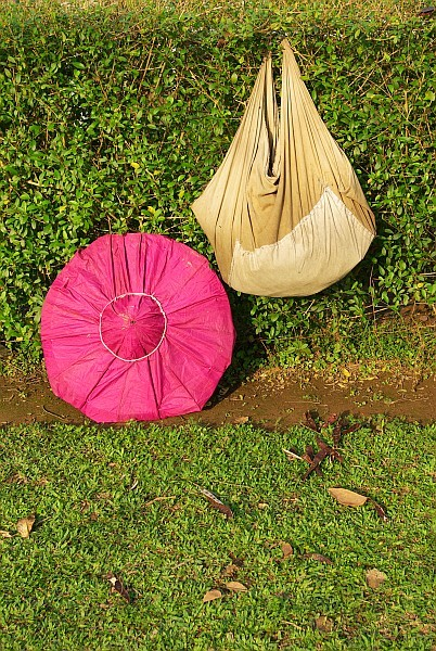Tea picking equipment - India (Assam, Brahmaputra cruise, Agra and Jaipur)