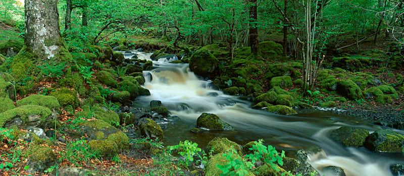 Watendlath Beck, Derwent Water EDC088 - Lake District
