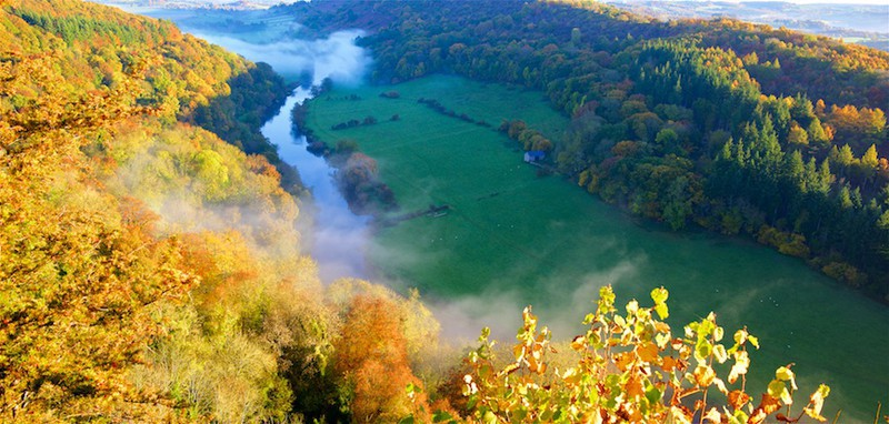 Symonds Yat, Forest of Dean, Wye Valley EDC253 - England