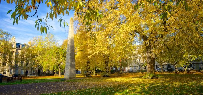 Autumn in Queen Square, Bath EDC260 - Bath