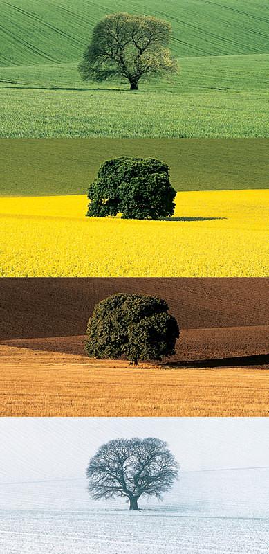 Four Seasons EDC074 - England