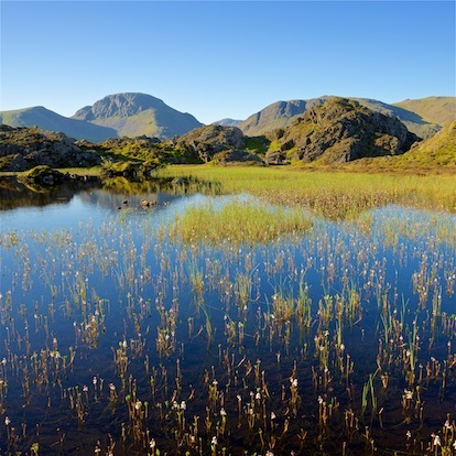 Great view,Great Gable from Innominate Tarn EDC274 available as card - Lake District