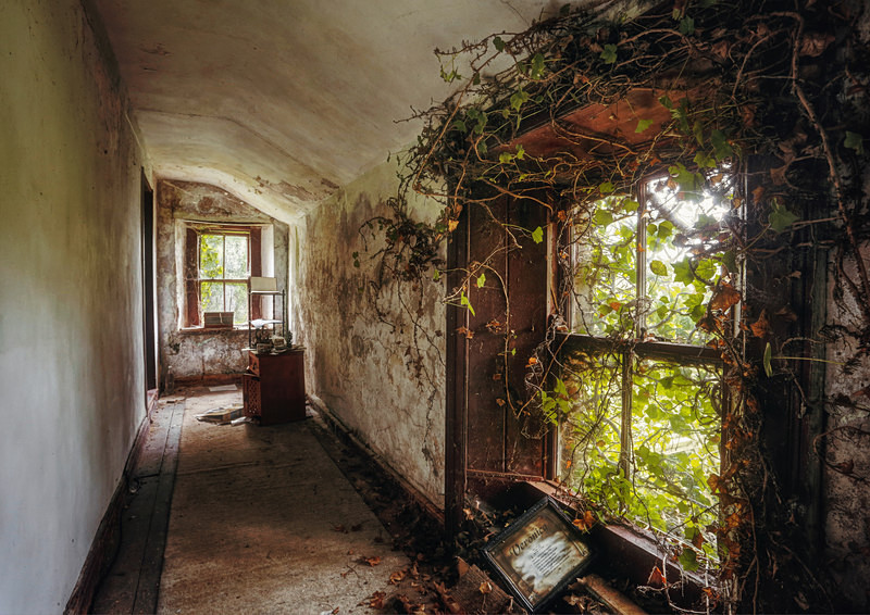 Ivy Window - 'Abandoned Ireland'