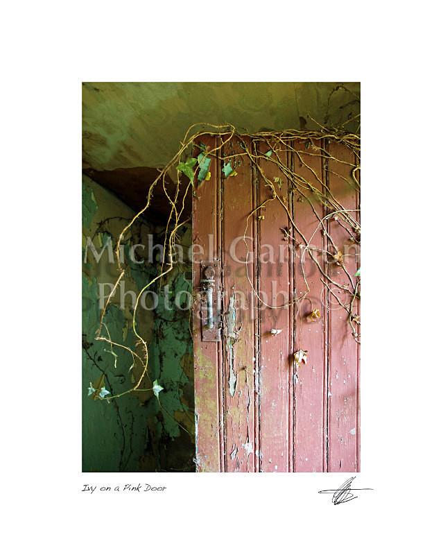 Pink Door - Derelict Ireland