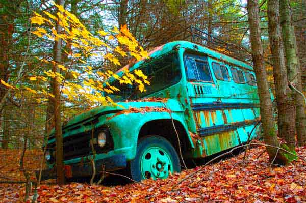 Abandoned - AUTUMN COLOURS