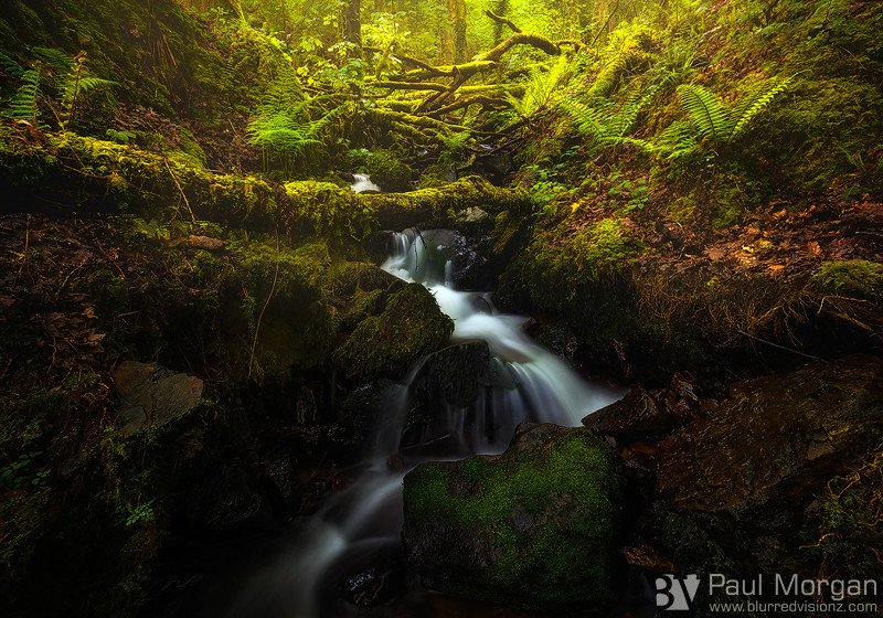Tolkienesque - Landscape (Horizontal)