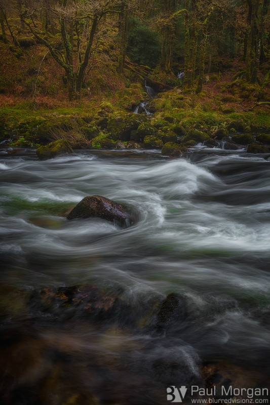 River Dance - Landscape (Vertical)