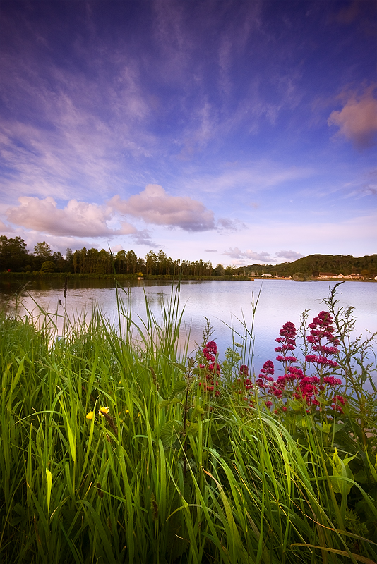 Millbrook Lake-Cornwall-Millbrook-Paul Morgan-Landscape Photography
