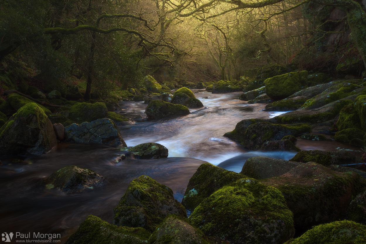 Golden Flow - Landscape (Horizontal)