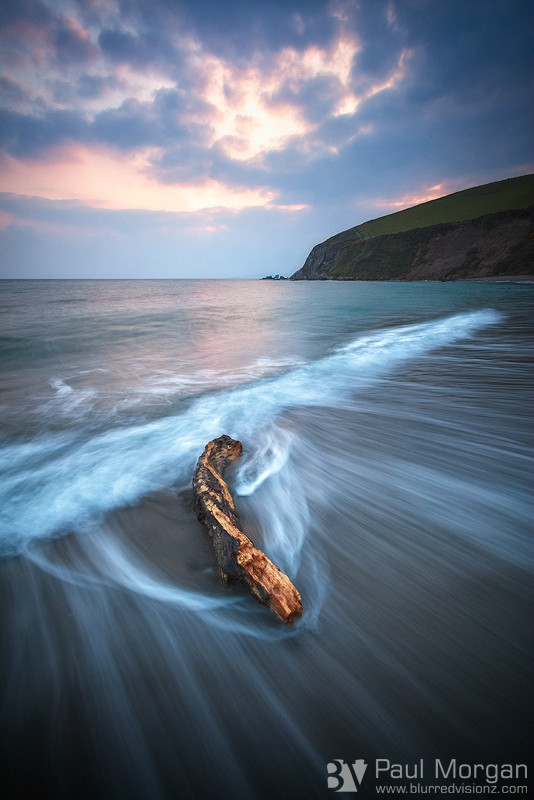 Beach Wood - Landscape (Vertical)