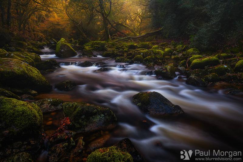 The Flow Of Autumn - Landscape (Horizontal)