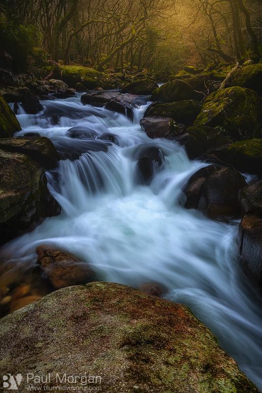 Shaughly Rivers Flow - Landscape (Vertical)