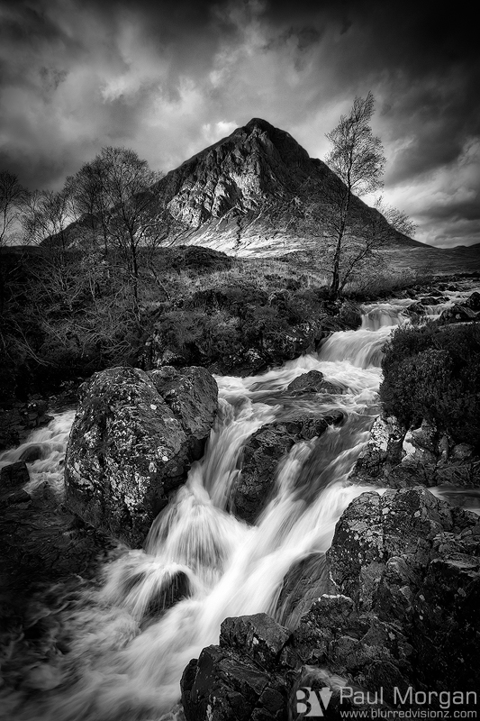 Glencoe Gold II Mono - Other Places