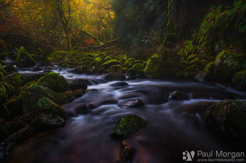 The Flow of Autumn II - Landscape (Horizontal)