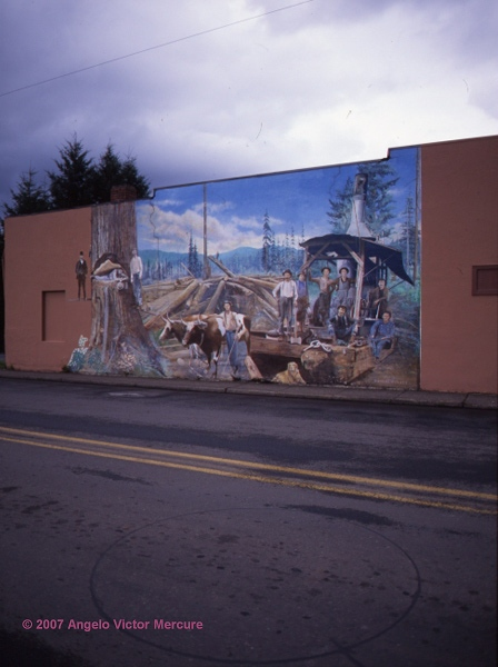 1503 - Walls Of Distinction