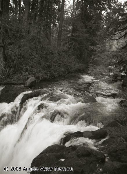 2307 - Waterfalls