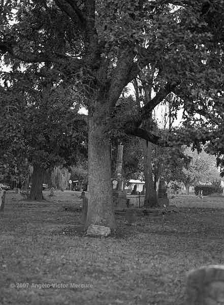 500 - Old Graveyards