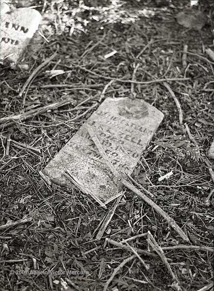 519 - Old Graveyards