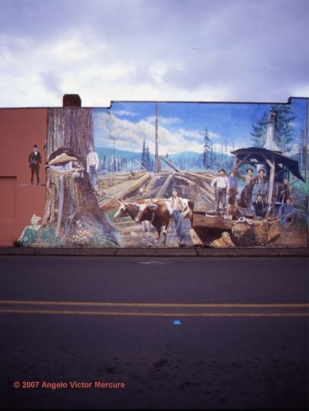 1506 - Walls Of Distinction
