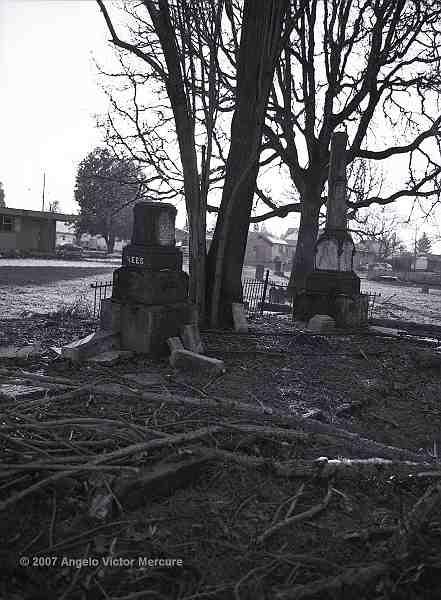 516 - Old Graveyards