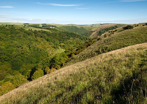 Deep Dale photographed by Roger Butterfield